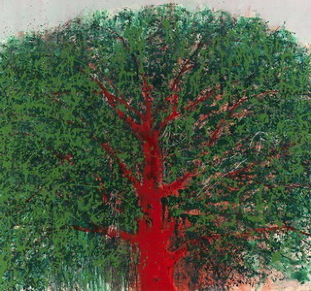 毛旭輝-紅樹