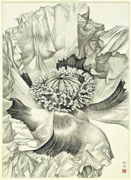 劉丹 Liu Dan-無題:罌粟花 Untitled - Poppy Flower