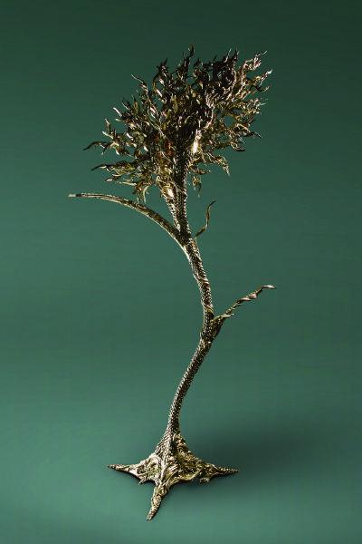 蓋伯瑞.博瑞多-晃動生命之樹