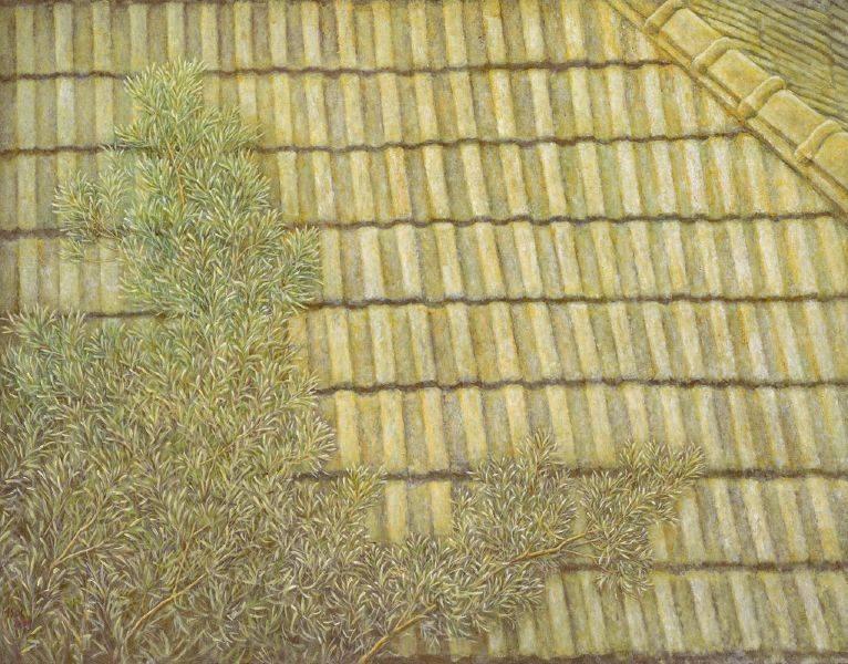 許莉青-屋頂與羅漢松