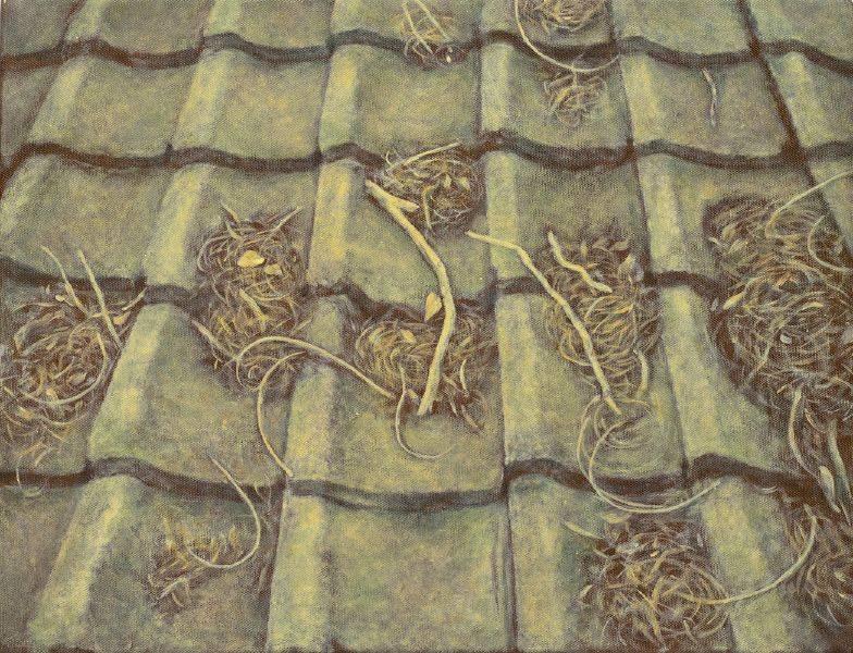 許莉青-屋頂落冬