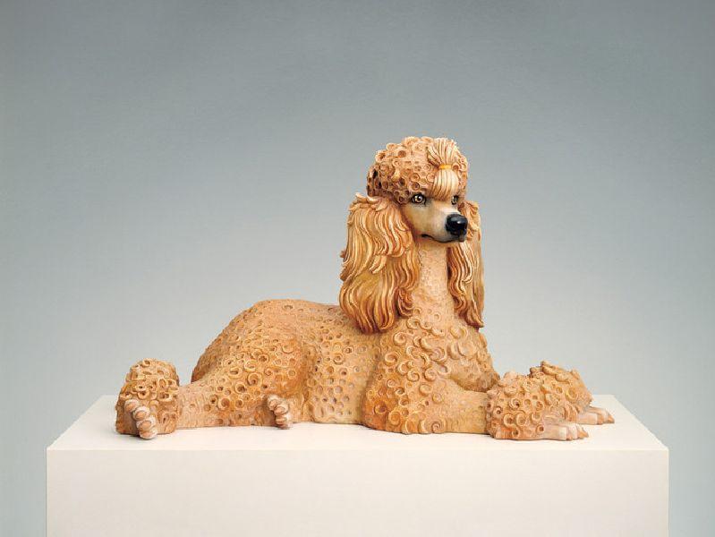 傑夫昆斯-Poodle