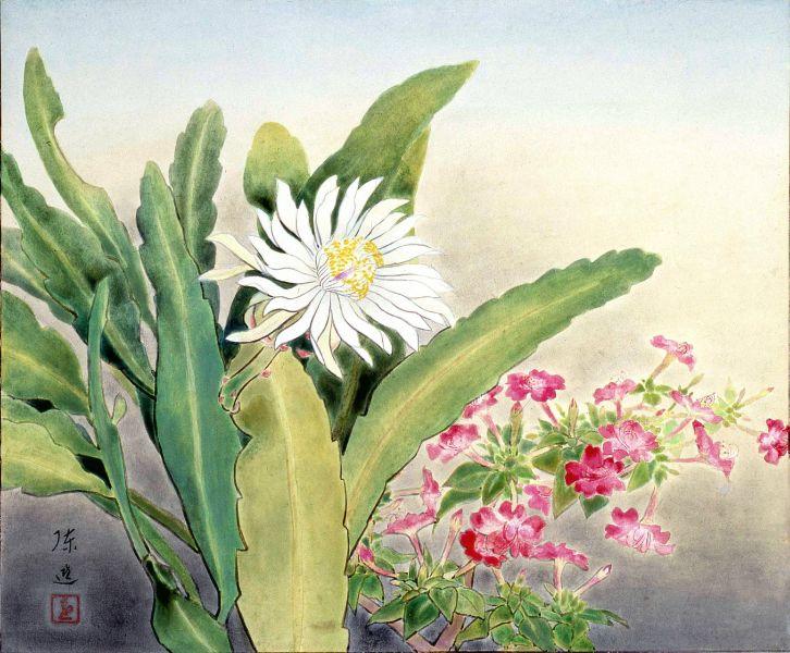 陳進-曇花