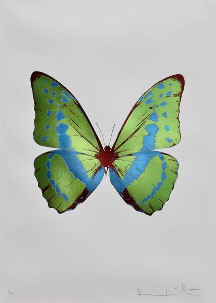達米恩赫斯特-靈魂-葉之綠