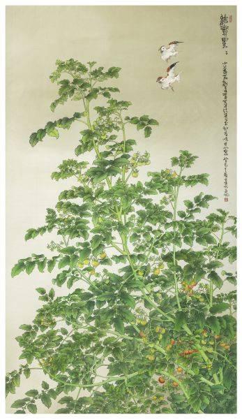 陳士侯-番茄