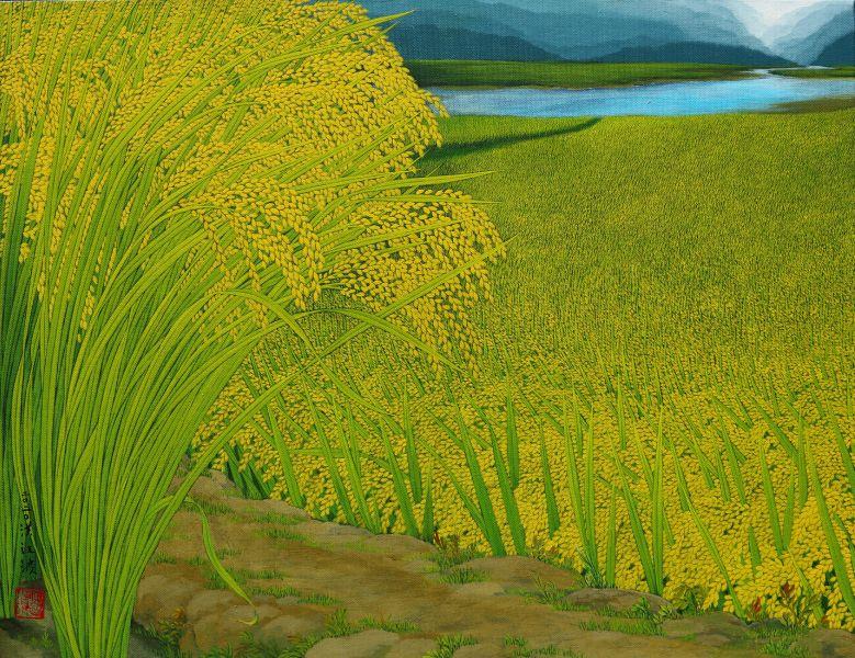 洪江波-稻禾