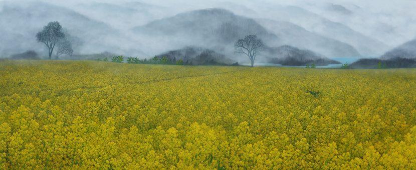 洪江波-霧靄繁花