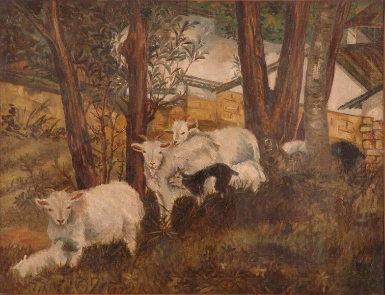 劉錦堂-羊