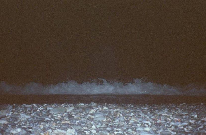 楊禮瑛-漂浮在海上