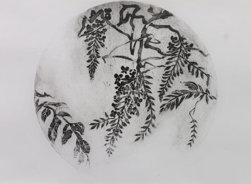 林芷吟-生命週記