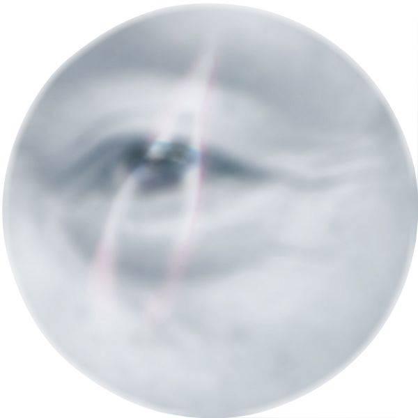 蔡馥榕-花與眼- 流光II