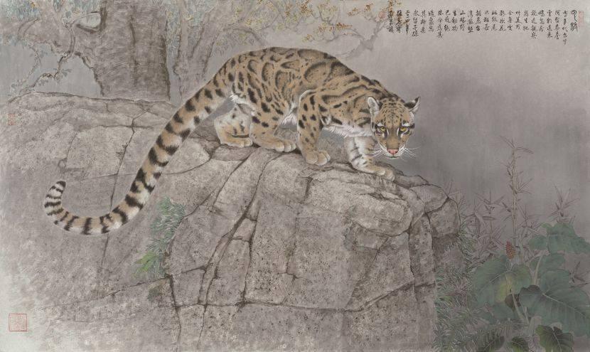 張克齊-雲 豹