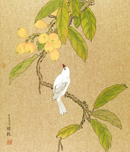陳 牧  -枇杷白鵲
