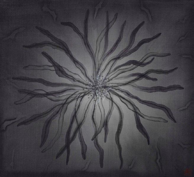 劉信義-慵懶在黑暗裡(松葉菊 懶惰  )