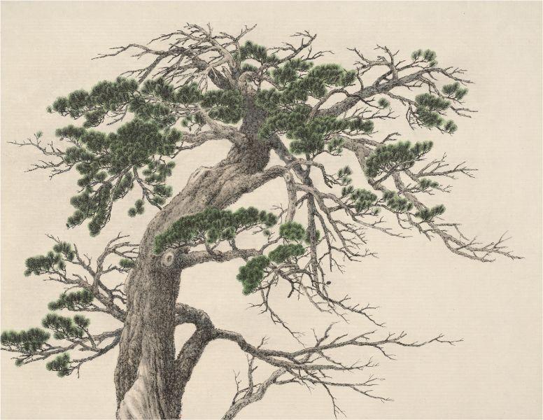夏一夫-青松 Green Pine