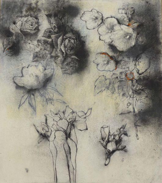 梁兆熙-花 Flower P1704