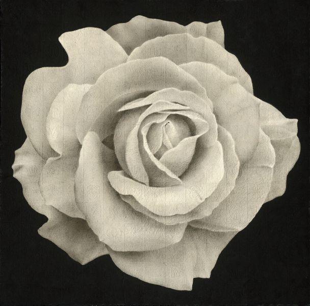 李君毅-花花世界:夜玫瑰