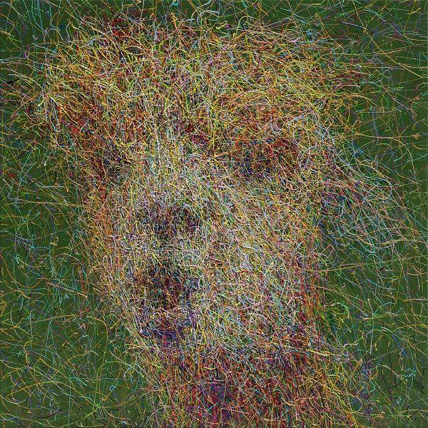 翁明哲-笑獸61#羊駝的深情凝視。