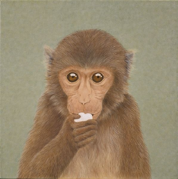 鍾舜文-高毛猴-嗯嗯