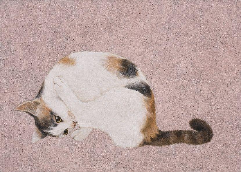 鍾舜文-瑜珈貓.池上2