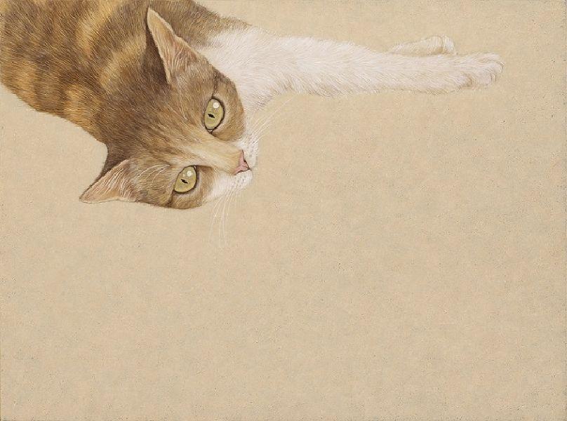 鍾舜文-日夢的貓.池上7