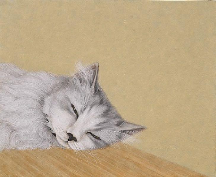 鍾舜文-日夢的貓.池上9