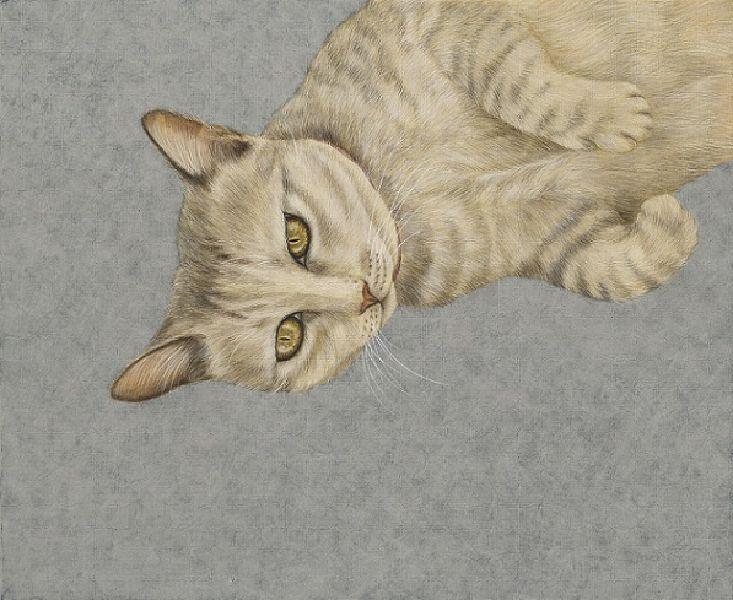 鍾舜文-日夢的貓.池上6