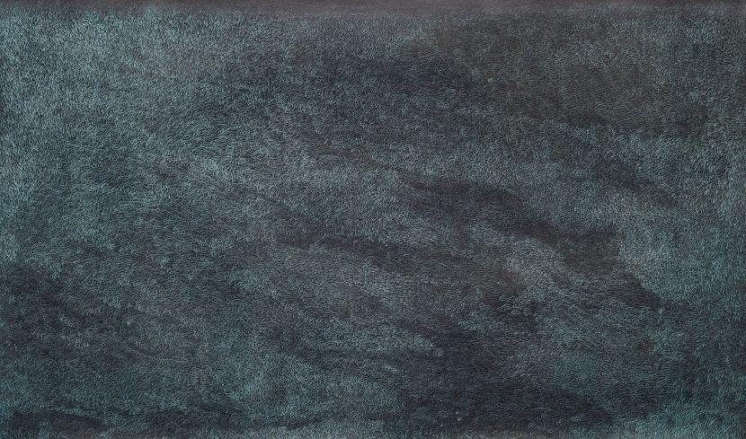 謝榕蔚-GM濕地