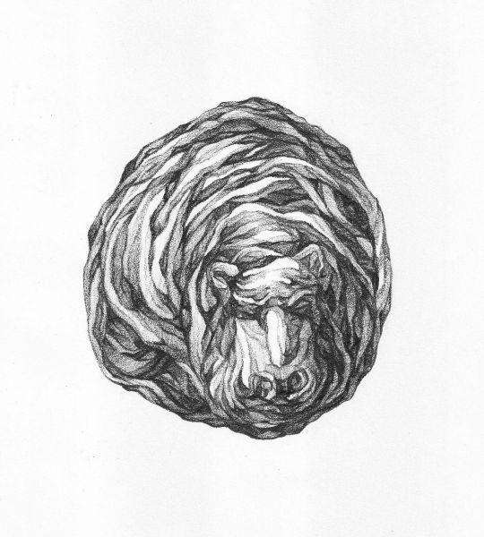 謝宗玲-畫石-似河馬化石