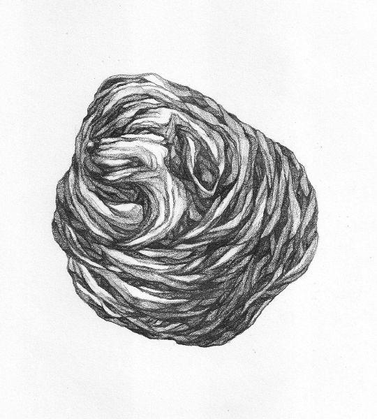 謝宗玲-畫石-似狗化石