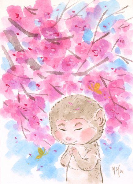 徐鈺樺 -櫻之願-猴