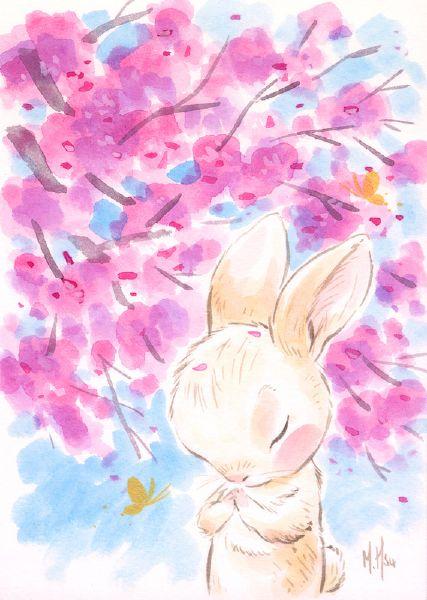 徐鈺樺 -櫻之願-兔