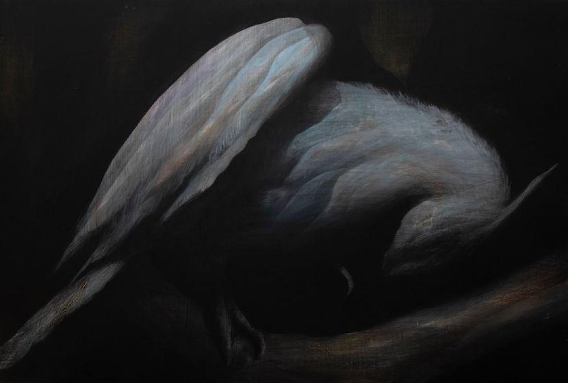 鄭思宇-青鳥