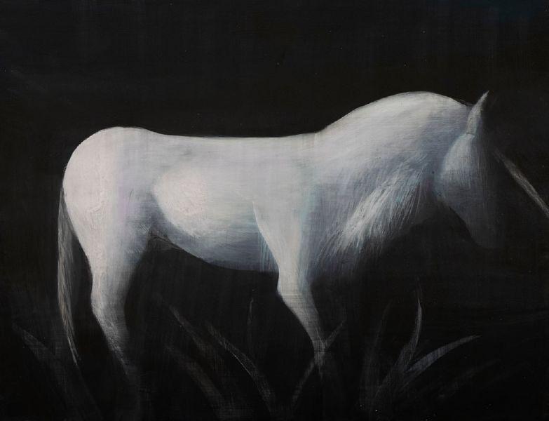 鄭思宇-角馬