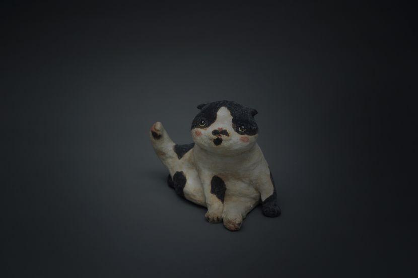 白昱軒-陶小貓2號