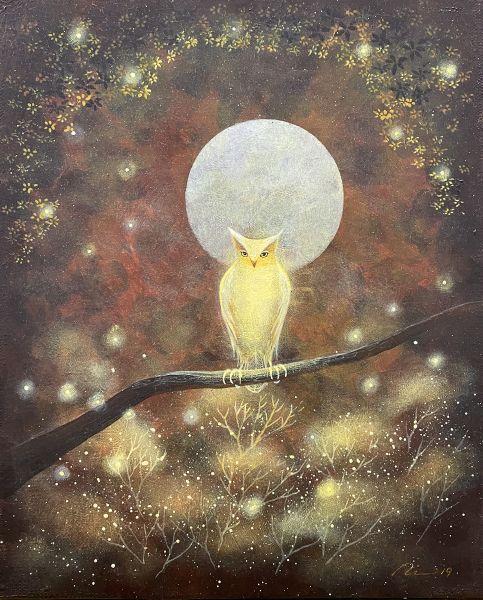 海至-光之貓頭鷹