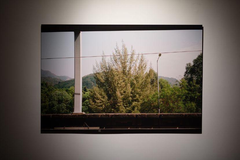 李曉華-In Between Green and Yellow I 青綠與淡黃之間 01