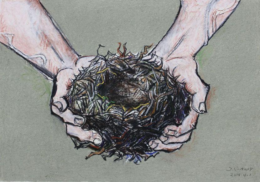 紀福堂-手中的鳥窩 The nest in my hands
