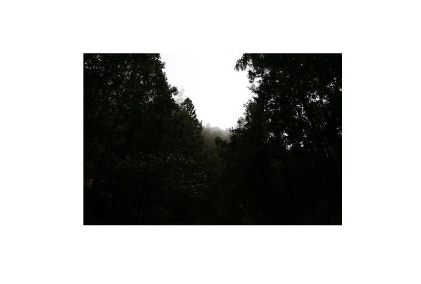 梁家寧-製造浪 漫 的的空 間體素 II :影像 - 縫隙