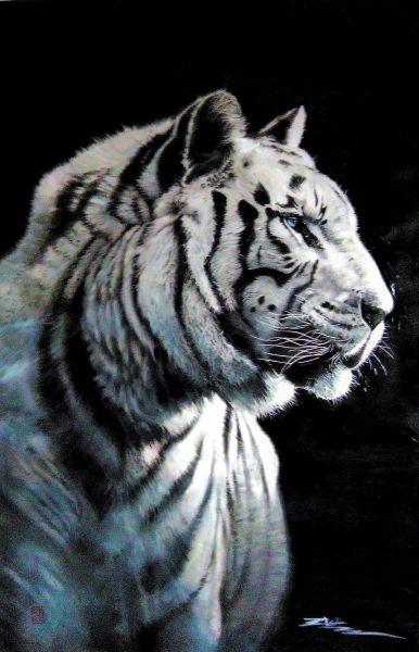 劉漢文-虎將Tiger