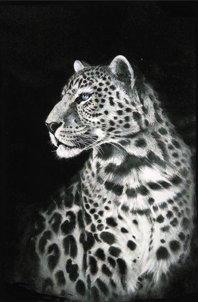 劉漢文-豹尊Leopard