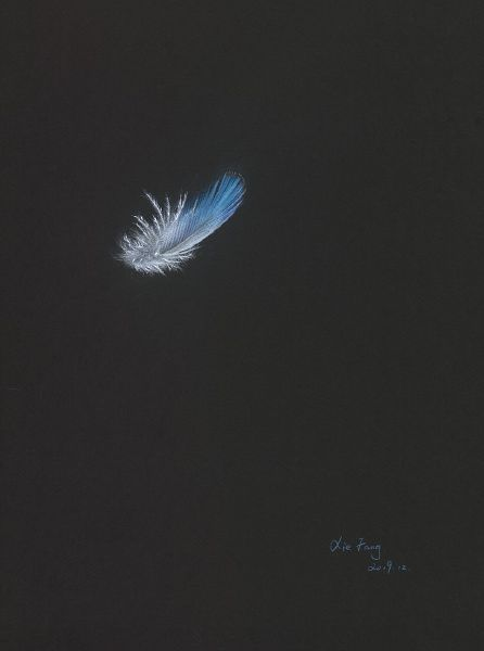 謝芳-鴻 ‧ 逸  Feather Series-1