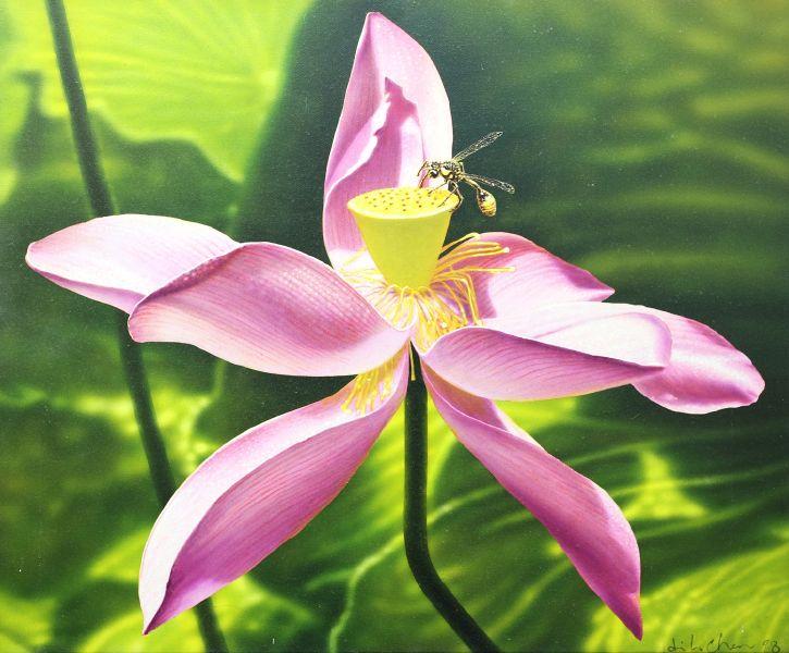 陳昭宏 -荷 Lotus