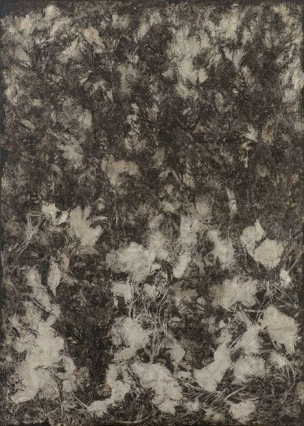 蔡獻友-植物史-15