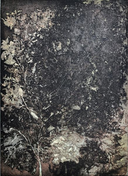 蔡獻友-植物史-9