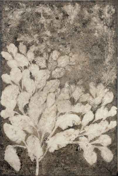 蔡獻友-植物史-8