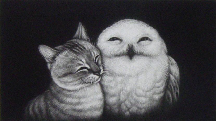 生田宏司-貓頭鷹與貓圖 II