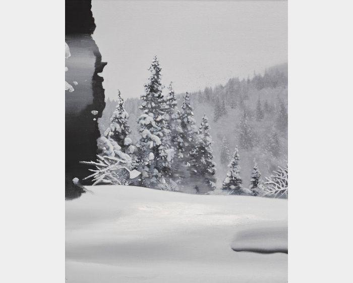 傅作新-雪中影 Shadow of the Snow