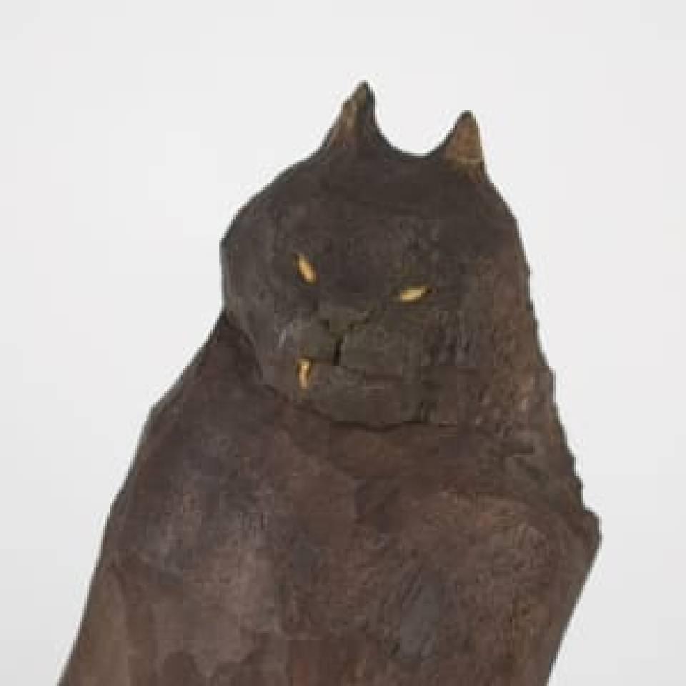 小黑喵 6 Black Meow 6