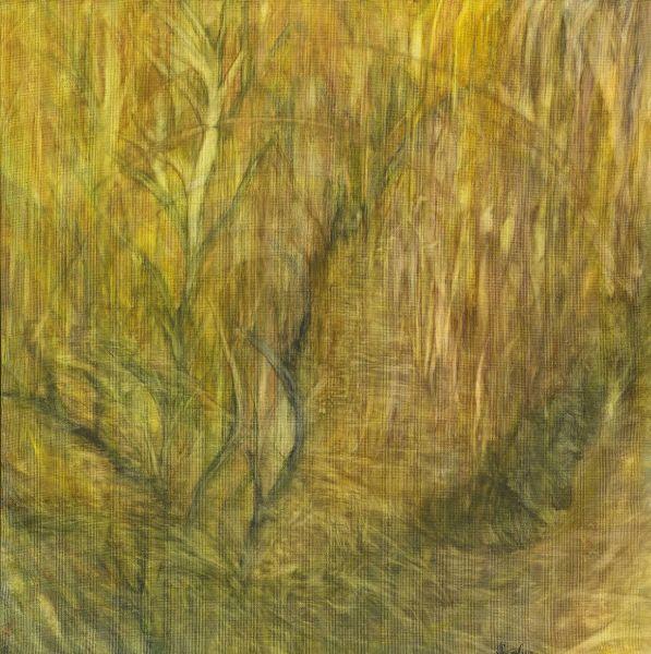 黃子鳳-尋找中的稻穗